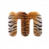 Tiger letter M - Small 3d Feline fur font isolated on white background. This alphabet is perfect for poster