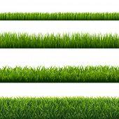 Green Grass Borders Set Isolated Background  poster