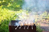 Grill Roast Barbecue In Nature. Assorted Meat From Chicken And Pork And On Barbecue Grill Cooked For poster