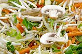 Stir Fry With Sliced Mushrooms