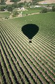 Ballooning Over Napa
