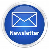 Newsletter Blue Button
