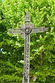 Cross in nature