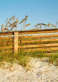 A Dune Boardwalk And Sea Oats
