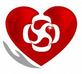 Cardiology, medical and healthy heart symbol