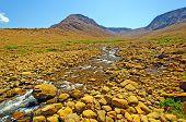 Desert Stream Cutting Through Volcanic Rock