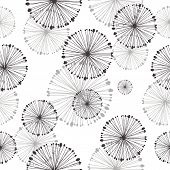 seamless pattern of dandelion