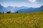 La vista de la montaña de Dolomiti