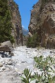 foto of samaria  - Samaria gorge at Crete island in Greece - JPG
