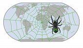 spider WWW