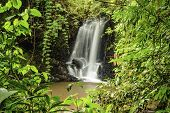 pic of humidity  - Beautiful waterfall in a clearing in a rain forest in Costa Rica - JPG