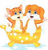 Cute cartoon cat and dog bathing time