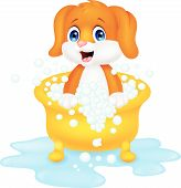 Dog cartoon bathing