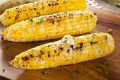 stock photo of grill  - Organic Grilled Corn on the Cob Ready to Eat - JPG