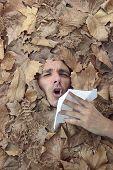 Autumnal Disease