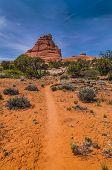 Canyonlands Landscape