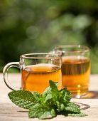 Herbal Peppermint Tea Closeup Macro Outdoor Summer