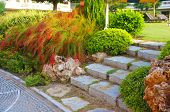stock photo of neat  - Landscaping in the garden - JPG