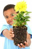Adorable Black Boy Child Holding Plant