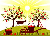 foto of hand-barrow  - vector hand barrow with basket of apples and goat in garden - JPG