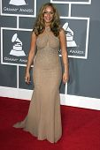 Leona Lewis at the 51st Annual GRAMMY Awards. Staples Center, Los Angeles, CA. 02-08-09