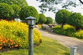 foto of public housing  - Old garden lamp in public park colorfull flower is background at Public park  - JPG