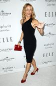 Sheryl Crow  at ELLE Magazine's 15th Annual Women in Hollywood Event. Four Seasons Hotel, Beverly Hills, CA. 10-06-08
