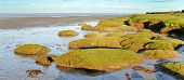 image of quicksand  - Typical panoramic Scenic view of the landscape of the Solway firth a tidal estuary for the river Eden located in Cumbria on the Scottish Border and an Area of Outstanding Natural Beauty - JPG