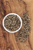 Milk thistle seed used in herbal medicine for liver protection and detox. Silybum marianum.