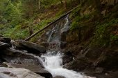 Waterfall And River In Forest