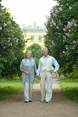 nice mature couple walking
