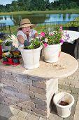 Senior Lady Preparing Ornamental Plant Pots