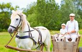 Farmer Family Riding A Horse Cart. Focus On Horse