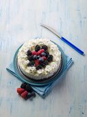 ice cream cake with mix berries