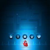 Heart Health Care Info Graphic
