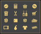 Shopping icons. Vector icons for online store or internet shop.