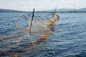 fishing nets - 11