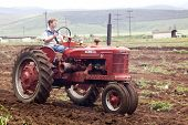 Red Restored Vintage Tractor Ploughing Agricultural Field