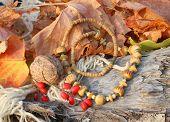 Ethnic Handmade Bone Necklace