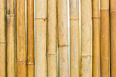 Brown Bamboo Fence Texture