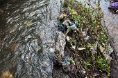Water Pollution. Garbage In The Urban Stream