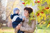 Young Mother Woman Girl Holding Baby Kid Son On Autumn Rowan Background