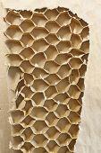 Inner Part Of Cardboard