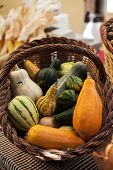 Basket Of Pumpkins Of Different Size And Forms