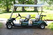 Double golf-cart