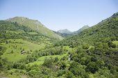Asturian Green Mountains