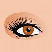 Open female eyes image with beautifully fashion make up