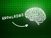 Knowledge Brain Background Knowledge Science Blackboard Green