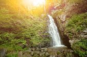 Beautiful waterfall in a forest with the early morning sun shining through.