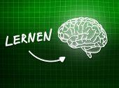 Lernen Brain Background Knowledge Science Blackboard Green